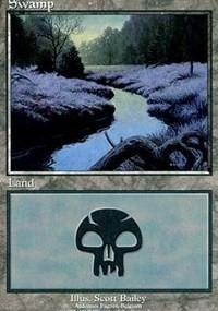 Swamp - Ardennes Fagnes