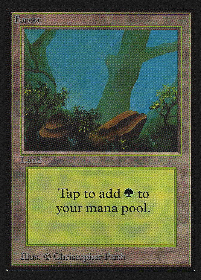 Forest (Rocks)(IE) card from International Edition