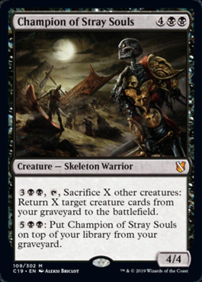 Champion of Stray Souls