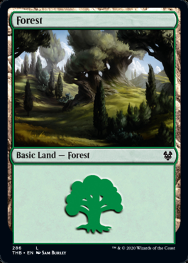 Forest (286) card from Theros Beyond Death