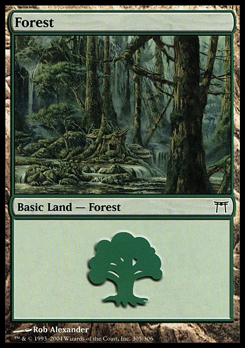 Forest (305) card from Champions of Kamigawa