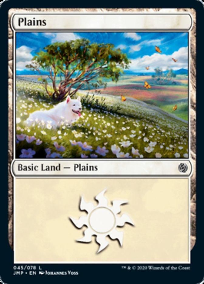 Plains (45)