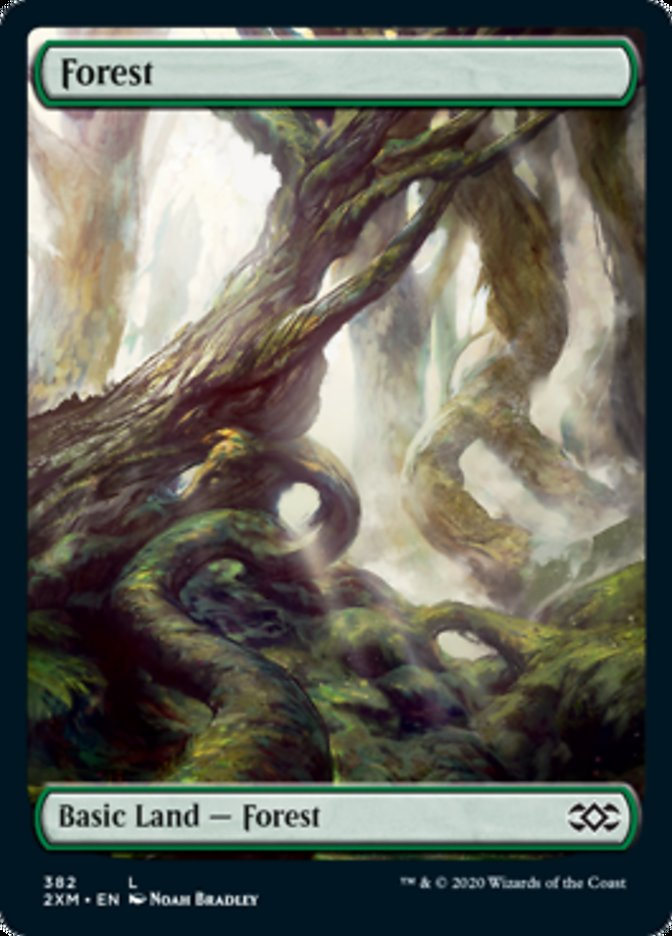 Forest (382) card from Double Masters
