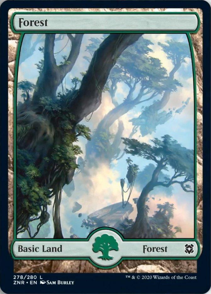 Forest (278) - Full Art card from Zendikar Rising