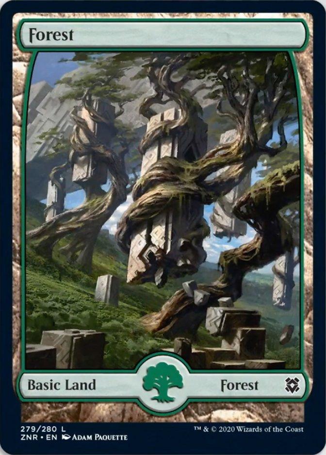 Forest (279) - Full Art card from Zendikar Rising