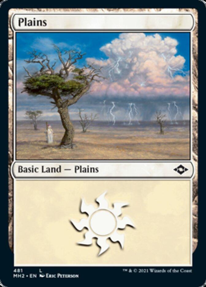 Plains (481) card from Modern Horizons 2