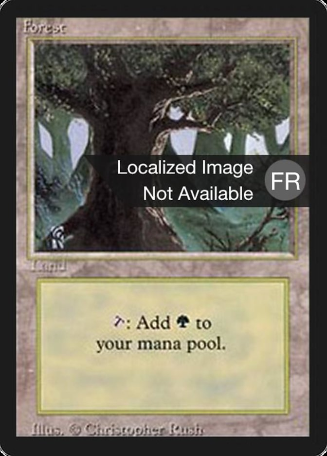 Forest (A) card from Revised Edition (Foreign Black Border)