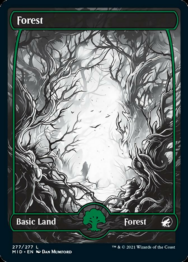 Forest (277) card from Innistrad: Midnight Hunt