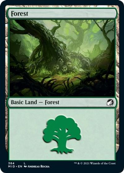Forest (384) card from Innistrad: Midnight Hunt