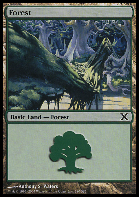 Forest (380) card from Tenth Edition