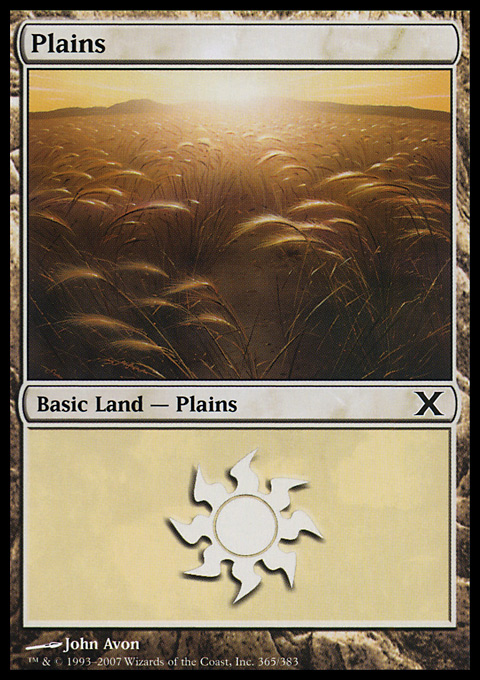 Plains (365)  card from Tenth Edition
