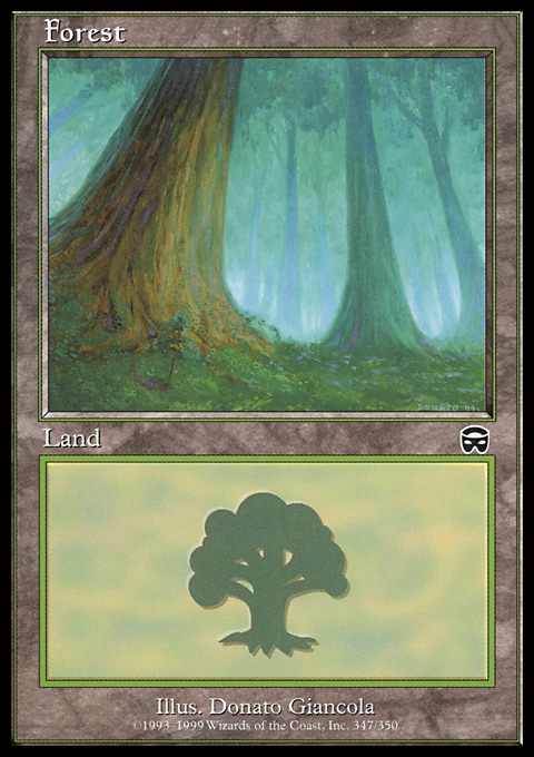 Forest (347) card from Mercadian Masques