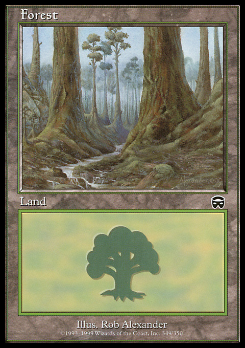 Forest (349) card from Mercadian Masques