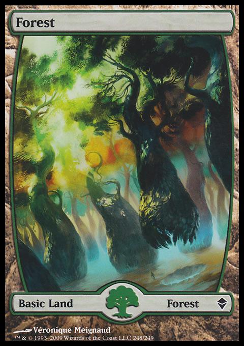 Forest (248) - Full Art card from Zendikar