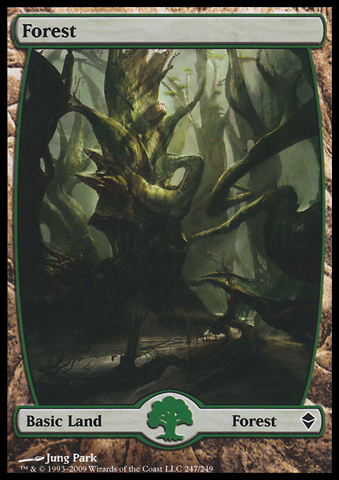 Forest (247) - Full Art card from Zendikar