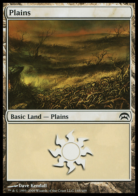 Plains (145) card from Planechase