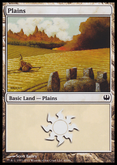 Plains (40)  card from Duel Decks: Knights vs. Dragons