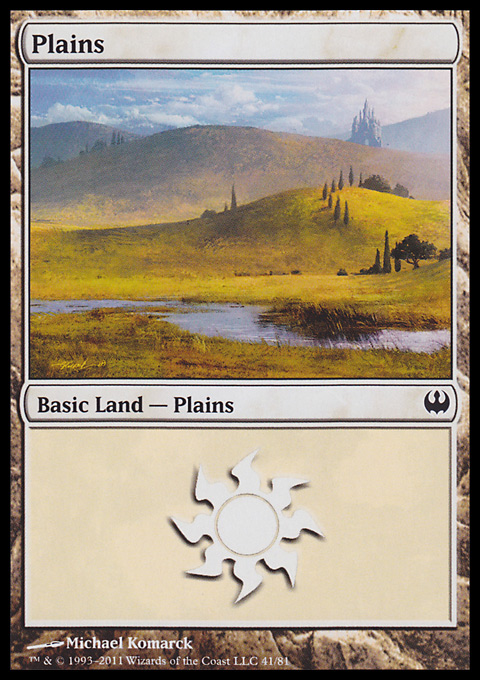Plains (41)  card from Duel Decks: Knights vs. Dragons
