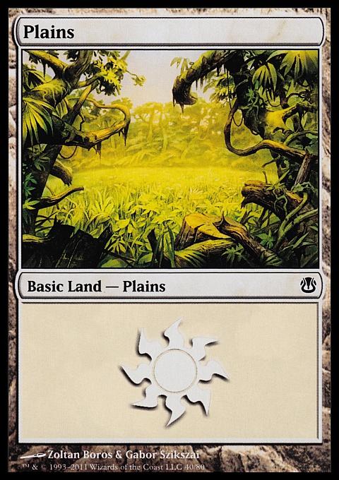 Plains (40)  card from Duel Decks: Ajani vs. Nicol Bolas