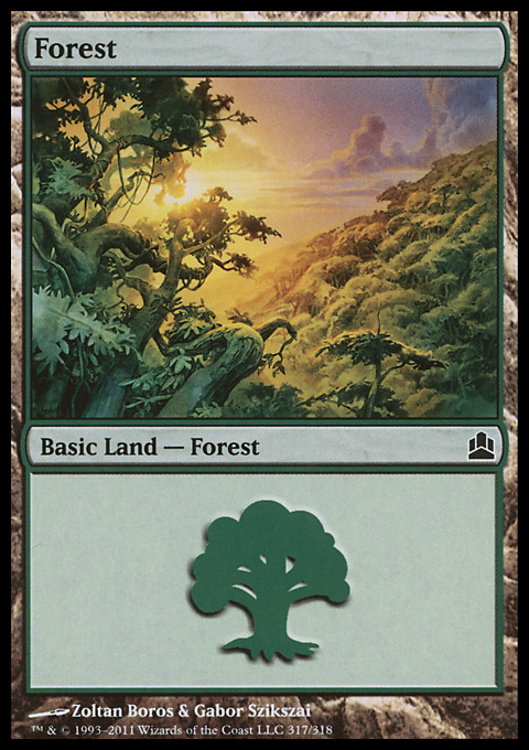 Forest (317)  card from Magic: The Gathering-Commander
