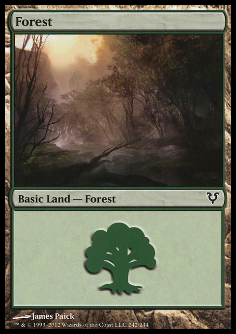 Forest (242)  card from Avacyn Restored