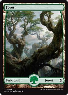 Forest (274) - Full Art card from Battle for Zendikar
