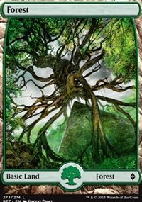 Forest (273) - Full Art card from Battle for Zendikar
