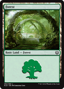 Forest (262) card from Kaladesh